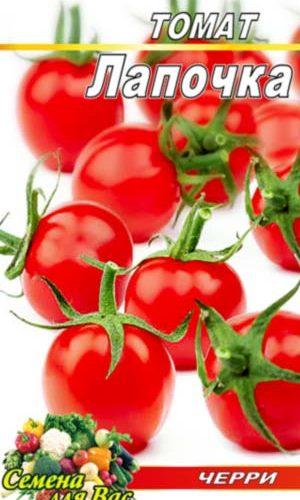 Tomato-Lapochka-cherri