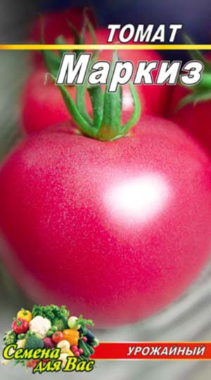 Tomato-Markiz-rozovyiy