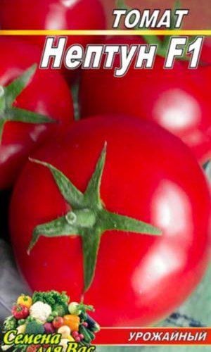 Tomato-Neptun-F1