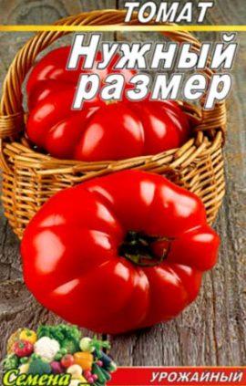 Tomato-Nuzhnyiy-razmer