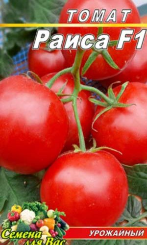 Tomato-Raisa-F1