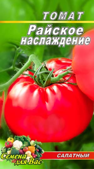 Tomato-Rayskoe-naslazhdenie