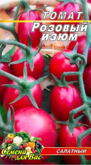 Tomato-Rozovyiy-izyum