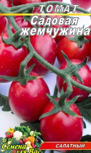 Tomato-Sadovaya-zhemchuzhina
