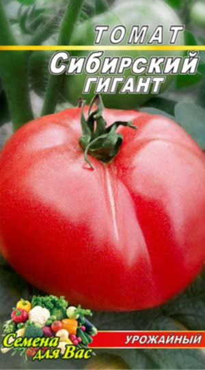 Tomato-Sibirskiy-gigant