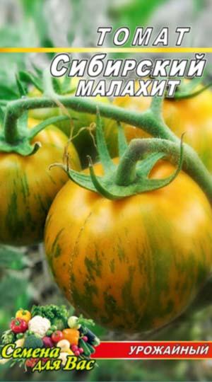 Tomato-Sibirskiy-malahit