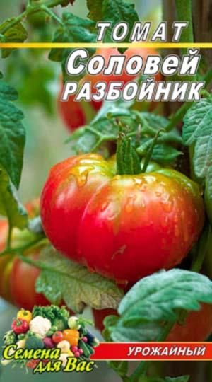 Tomato-Solovey-razboynik