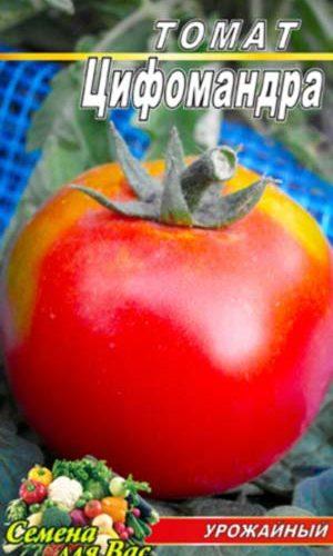 Tomato-TSifomandra