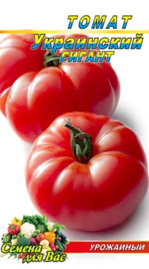 Tomato-Ukrainskiy-gigant
