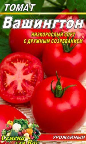 Tomato-Vashington
