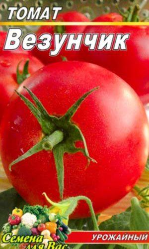 Tomato-Vezunchik