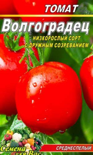 Tomato-Volgogradets
