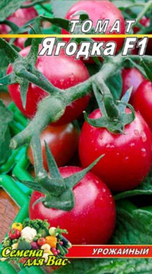 Tomato-YAgodka-F1