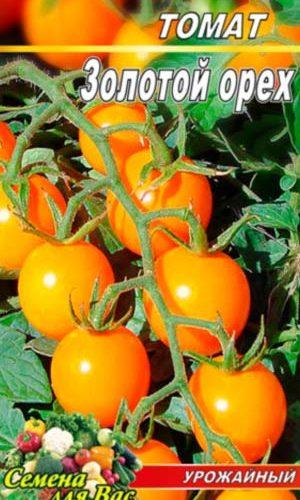 Tomato-Zolotoy-oreh