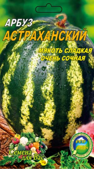 arbuz-astrahanskij