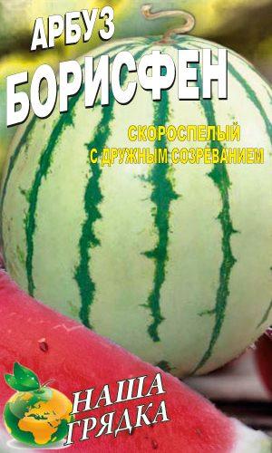 Watermelon-borisfen-semena