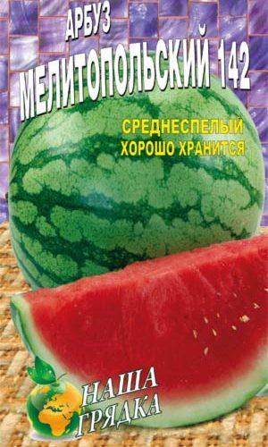 Watermelon-melitopolskiy-142