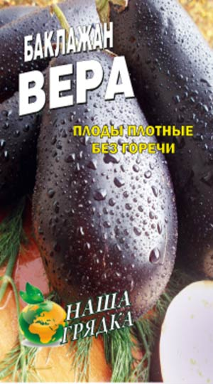 Eggplant-vera
