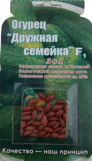 Cucumber-druzhnaya-semeyka