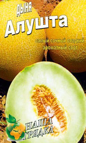 Melon-alushta