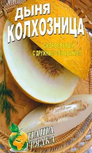 Melon-kolhoznitsa