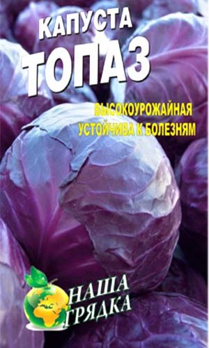 Red-cabbage-topaz