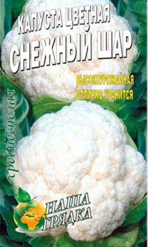 Cauliflower-snezhnyiy-shar