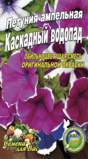 Petunia-ampelnaya-kaskadnyiy-vodopad