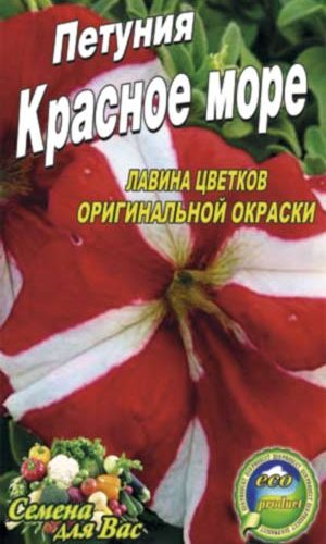 Petunia-krasnoe-more