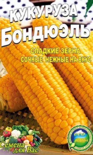 Maize-bondyuel