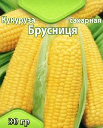 Maize-brusnitsya2