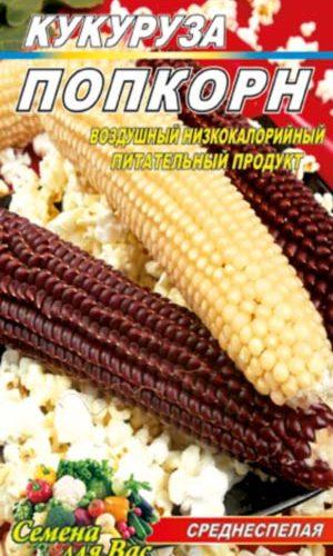 Maize-pop-korn