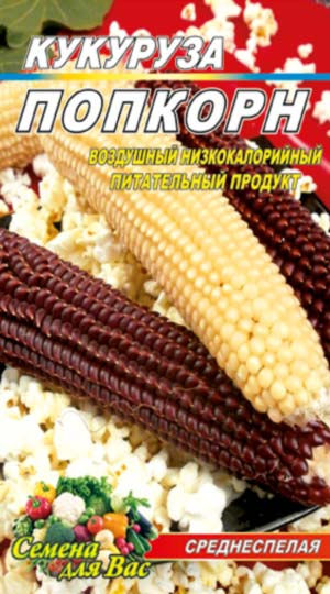 Maize-pop-korn