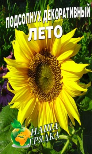 Sunflower-decorative-leto