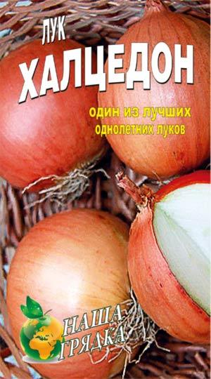 Onion-haltsedon