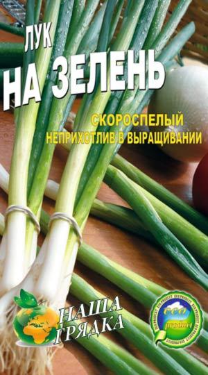 Onion-na-zelen-sort-luka