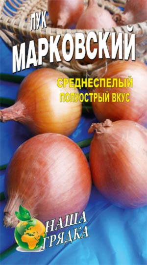 Onion-repchatyiy-sort-markovskiy