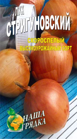 Onion-strigunovskiy