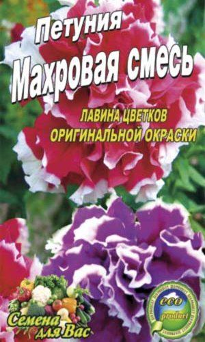 Petunia-mahrovaya-smes