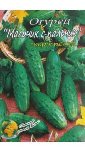 Cucumber - malichik