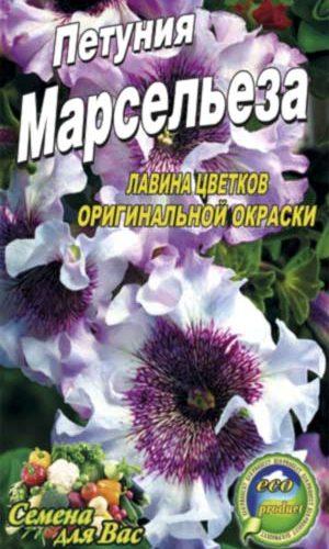 Petunia-marseleza