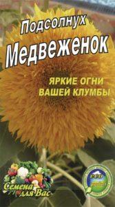 Sunflower-decorative-medvezhenok
