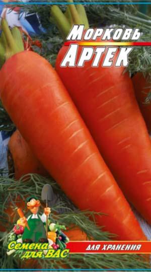 carrot-artek