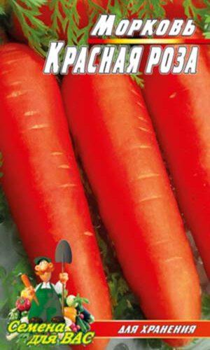 carrot-krasnaya-roza