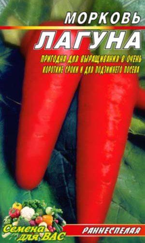 carrot-laguna