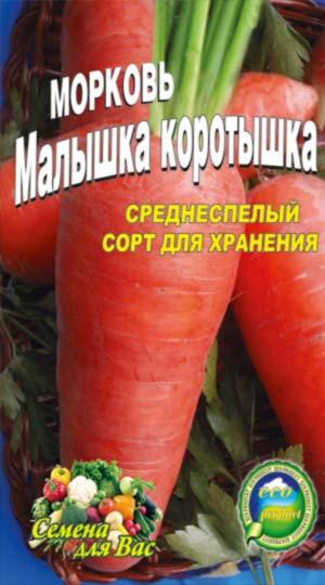 Carrot-malyishka