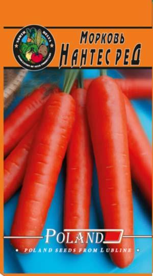 morkov-nantes-red-NORTH-DELTA