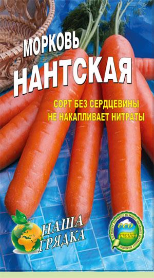 Carrot-nantskaya-semena