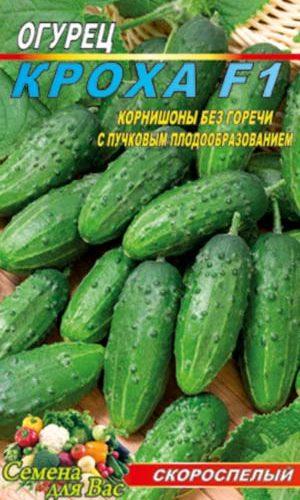 Cucumber-kroha
