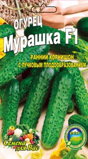Cucumber-murashka-F1